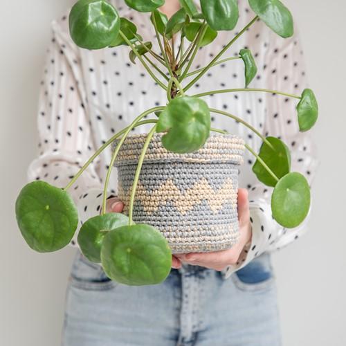 Basic Plant Baskets