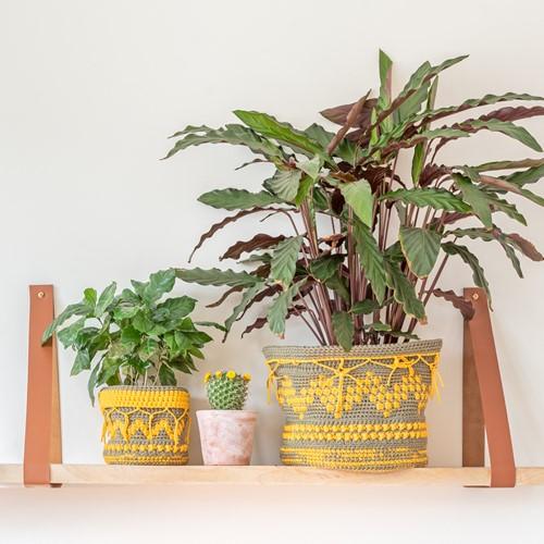 Boho Plant Baskets